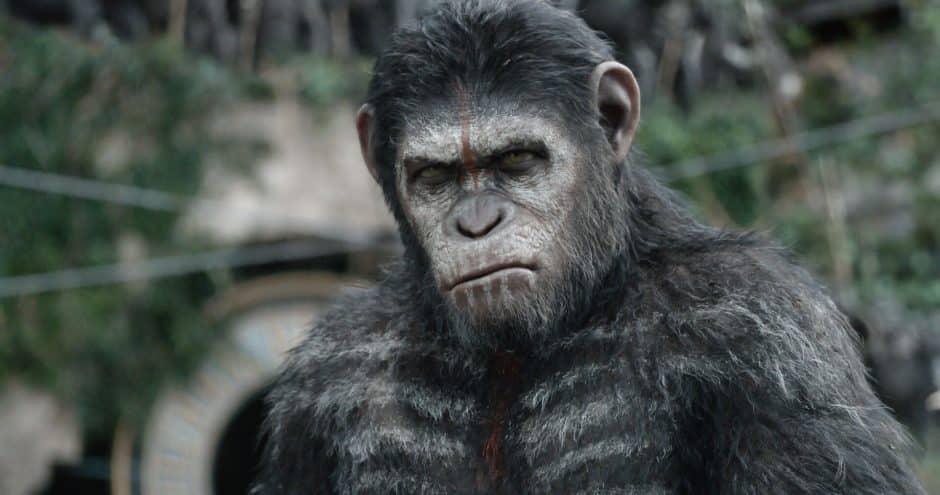 la planète des singes l'affrontement césar