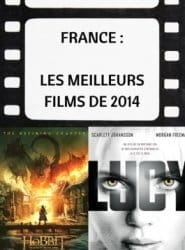 top des films au box offiche en france en 2014