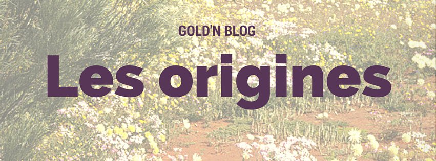 Gold'n Blog les origines du site web
