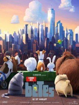 Comme des bêtes, le film autour de la véritable vie de nos animaux de compagnie !