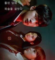 Extracurricular, le K-drama Netflix