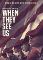 When they see us (Dans leur regard), la série Netflix